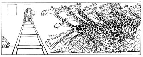 edika-girafes.jpg